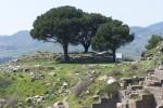 Pergamum, Zeus Alter